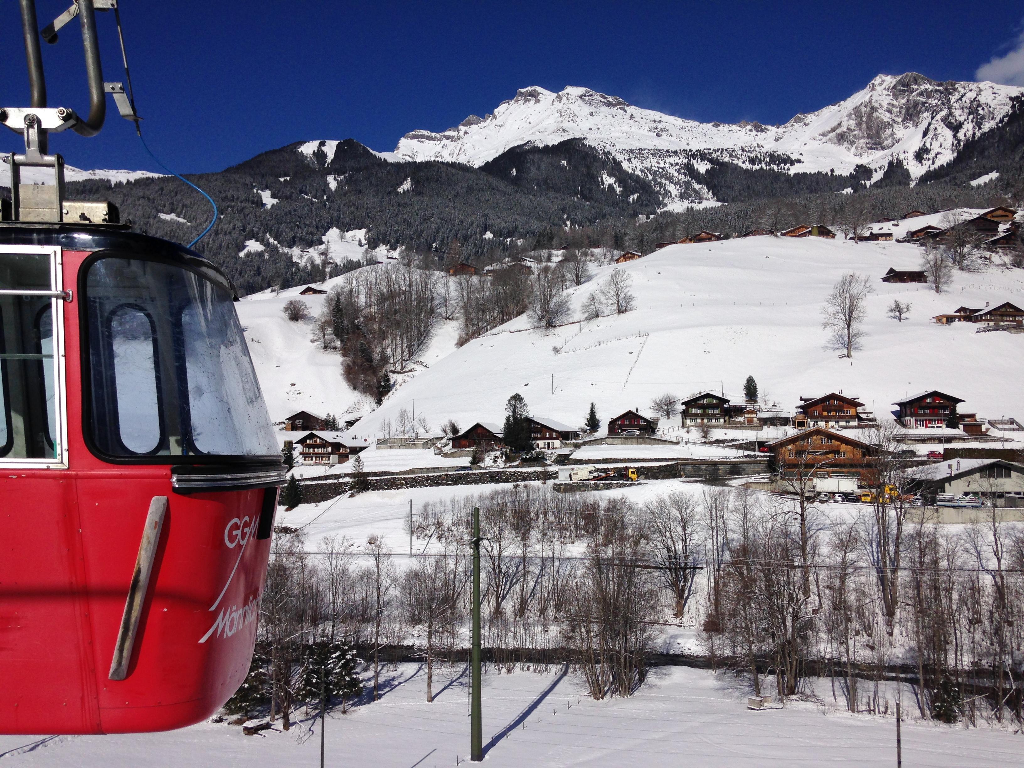 ski trenó